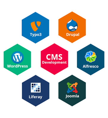 Software Development Services USA CMS Website